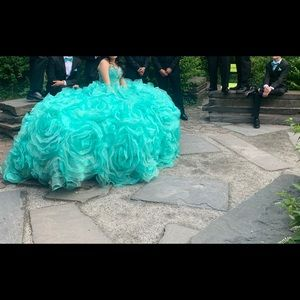 Quinceañera/ Sweet 16 Dress